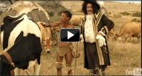 SA shines at 2011 IDF Dairy Innovation Awards