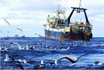 SA's fishing resources in precarious state