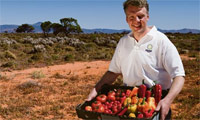Growing food in the desert: is this the solution to the world's food crisis?