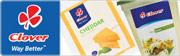 Clover cheese