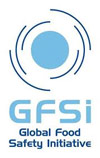 What is the GFSI Global Markets Programme?