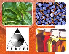 SAAFFI Newsletters