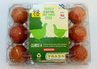 UK: Plastic packaging a cracking solution for Tesco