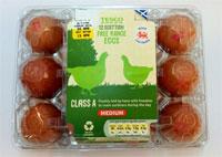 Tesco egg carton