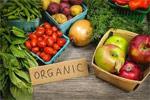New UK study sparks organic food health debate, again