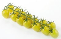 FLIA-LemonCherry-Tomato