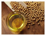 How healthy is genetically modified soybean oil?