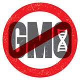 OP-ED: GMO food bans pander to ignorance