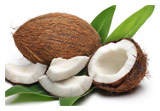 Firmenich names coconut the 2016 'Flavour of the Year'