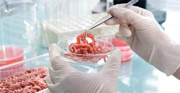 Food science L