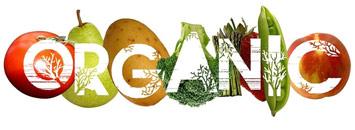 Organic L