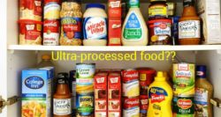 'Ultra-processed' food – myth or a viable classification parameter?