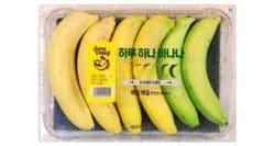Solving banana waste #1: low-tech option