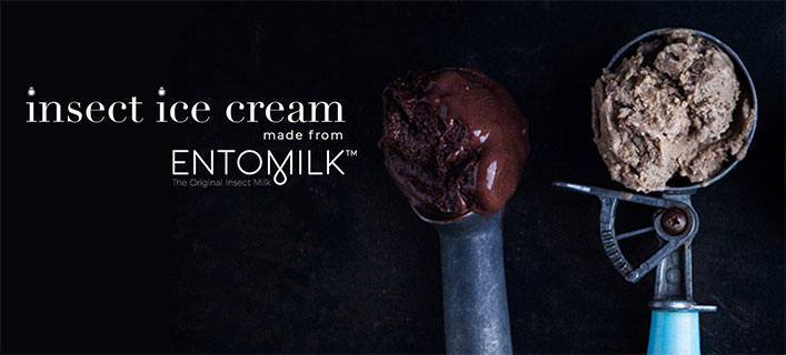The SA startup making ice-cream from insect milk