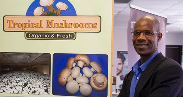 Local mushroom farmer named Pick n Pay's Small Supplier of the Year