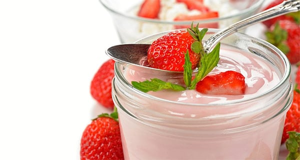 'Sweet' culture reduces added sugar in fermented dairy products