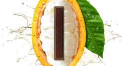 Nestlé finds a new way to sweeten chocolate without added sugar
