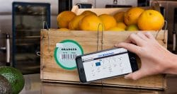 Five trends fueling food and beverage innovation in 2021