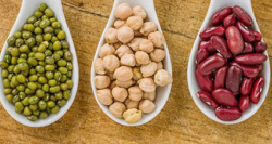 SAAFoST Webinar: The Plant-Protein Trend